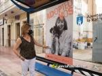 La Vall d'Uixó :: L'Ajuntament de la Vall d'Uixó fomenta l'adopció d'animals després de detectar un augment de l'abandó a l'estiu